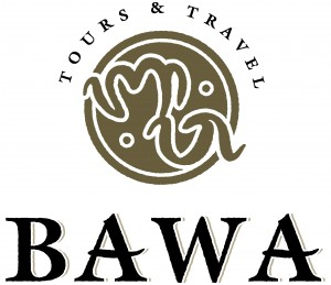 Bawa Tours & Travel
